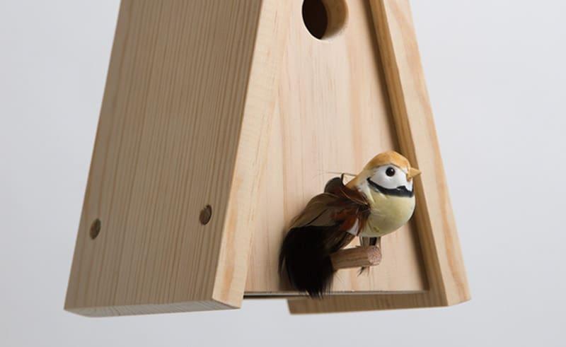 PO-BirdsHouse-03