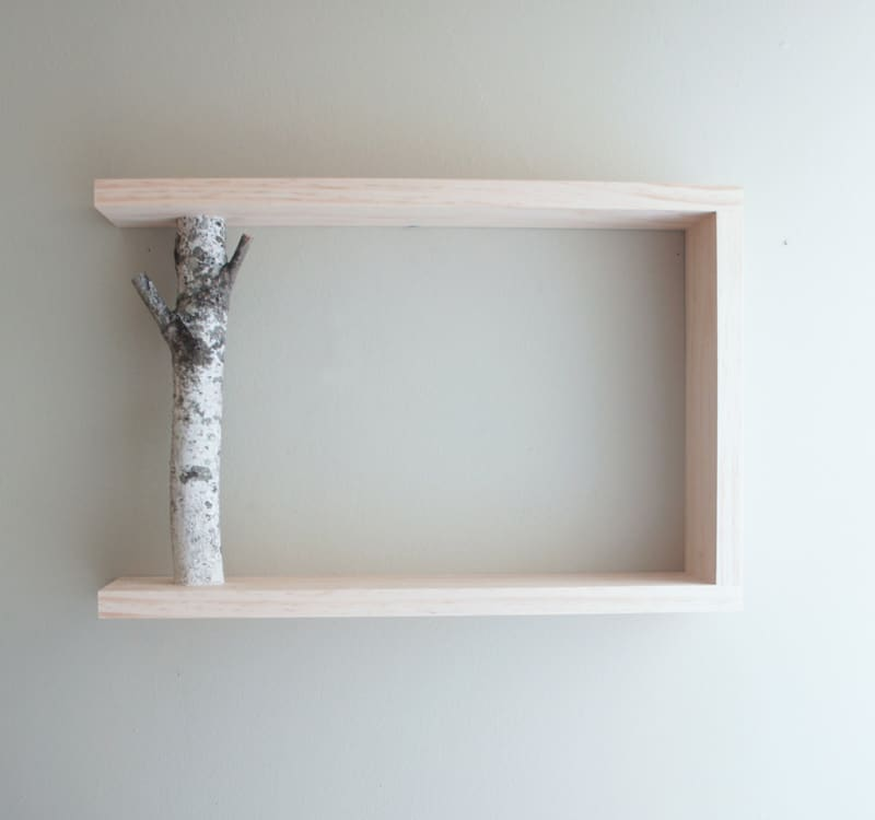 Perfect DIY: Birch Branch Floor Lamp Idea