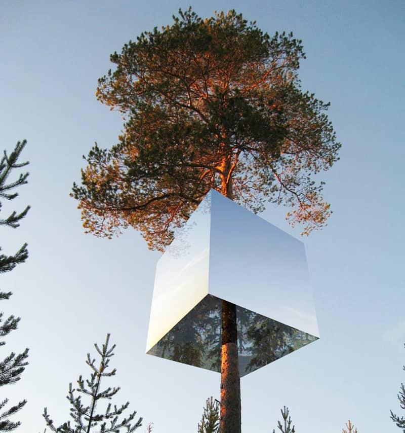 1 Mirror-Treehouse-In-Sweden-1 (8)