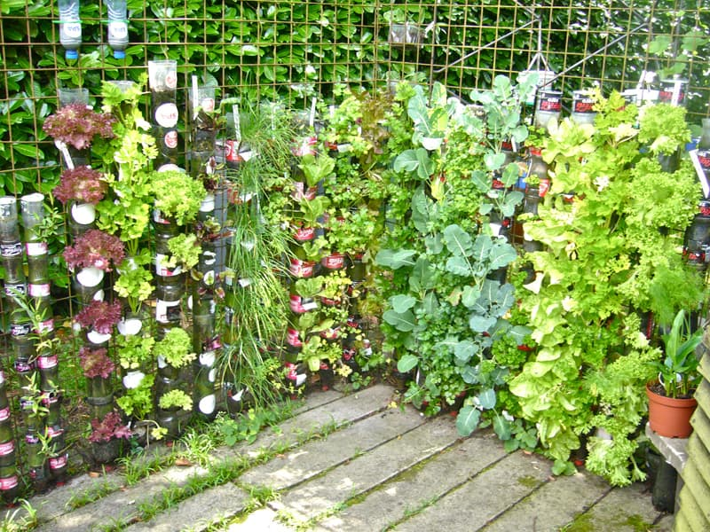 DIY-Stuff-for-the-Garden (8)