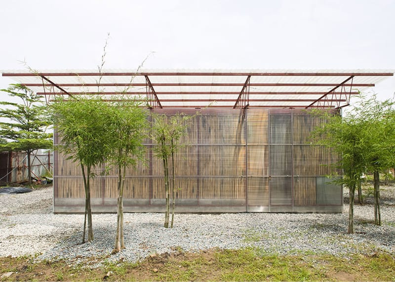 bamboo 11 (2)