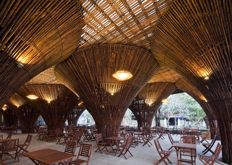 bamboo 3