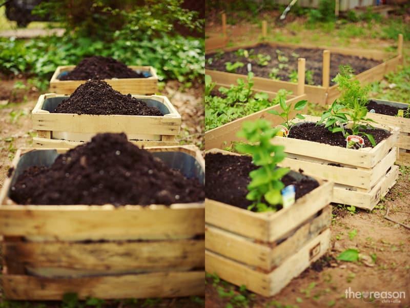 garden DIY designrulz (5)