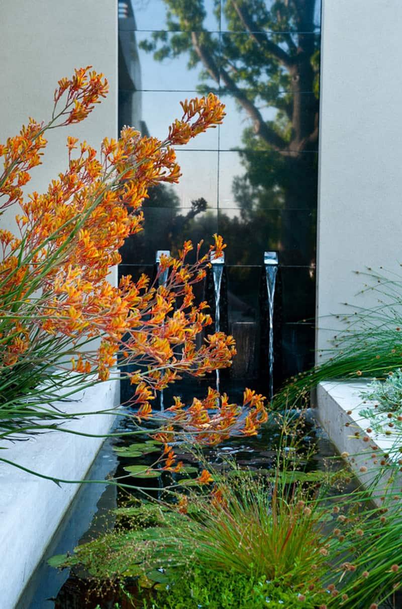 garden pool_designrulz (2)