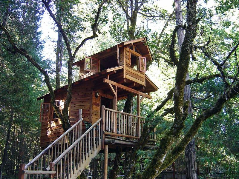 tree-houses-1