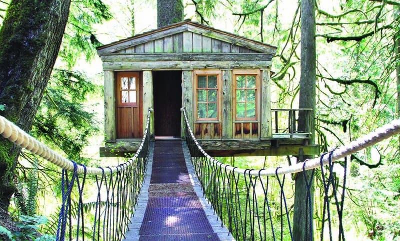 tree-houses-2