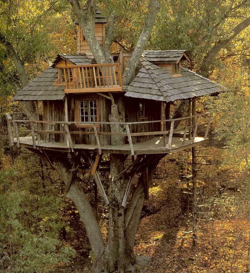 tree-houses-4