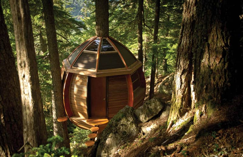 tree-houses-8