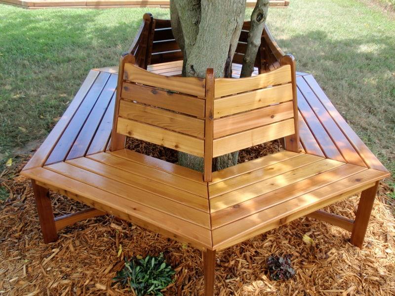 1. bench tree (2)