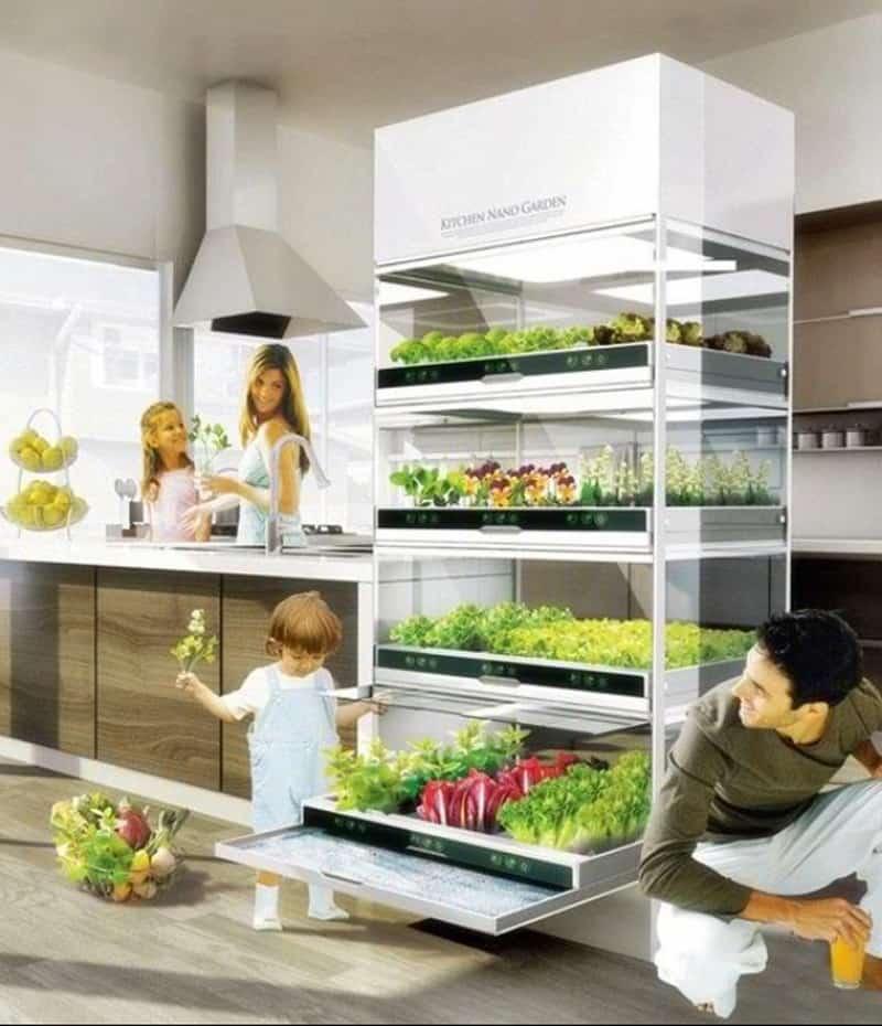 indoor garden designrulz (14)