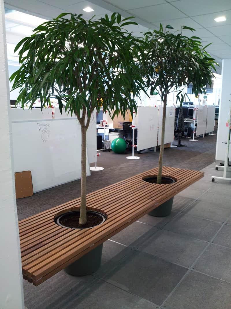 indoor garden designrulz (15)