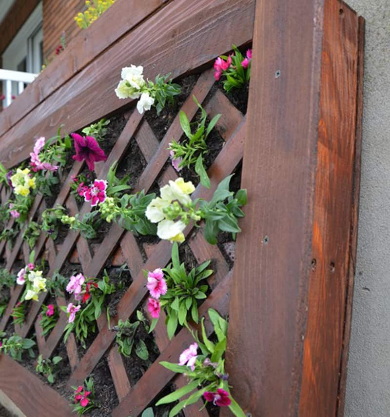 vertical-flower-garden-3