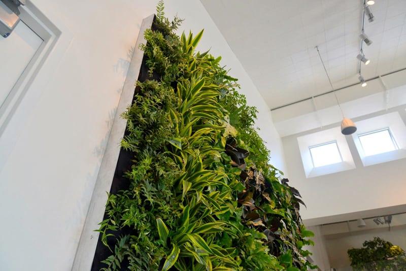 plants on walls_designrulz (11)
