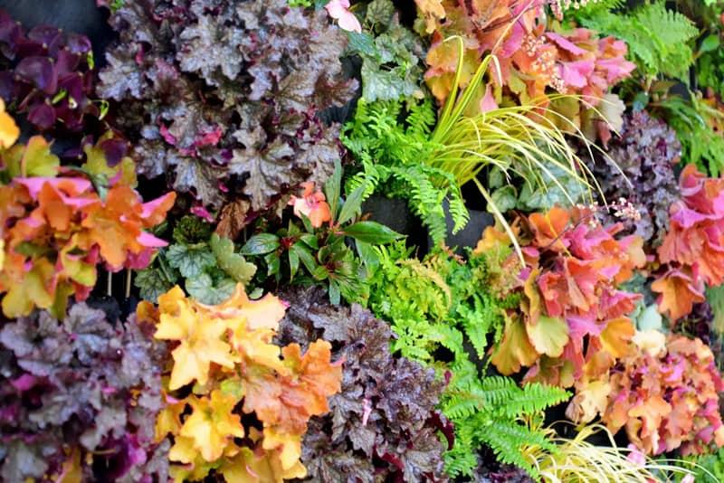 plants on walls_designrulz (15)