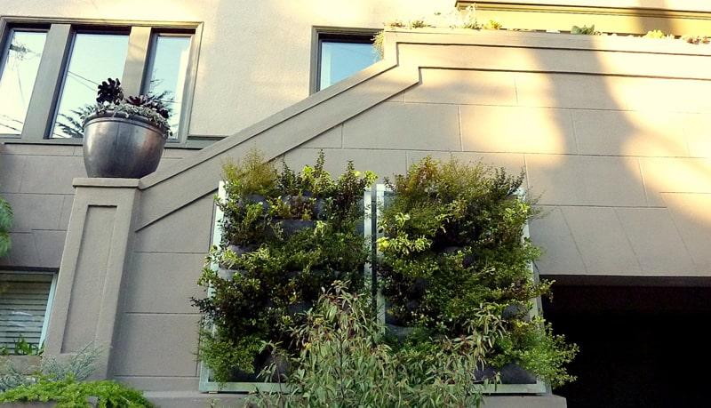 plants on walls_designrulz (17)