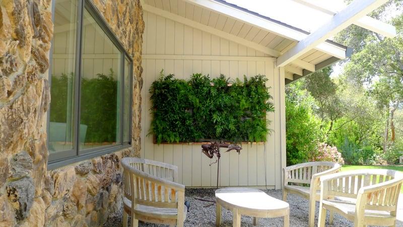 plants on walls_designrulz (18)