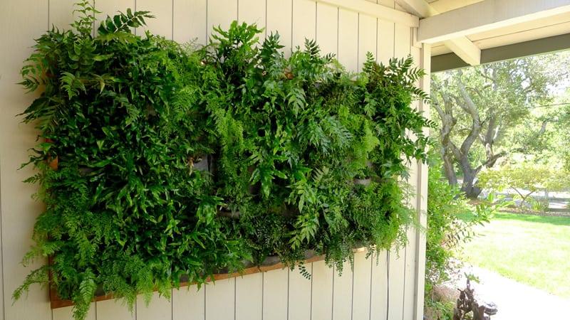plants on walls_designrulz (19)