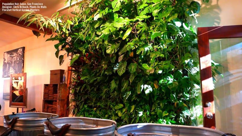 plants on walls_designrulz (2)