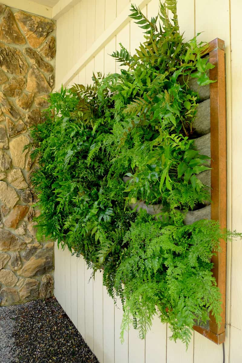 Vertical Indoor Herb Garden