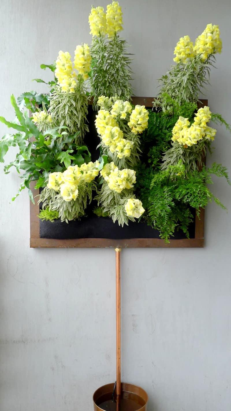plants on walls_designrulz (21)