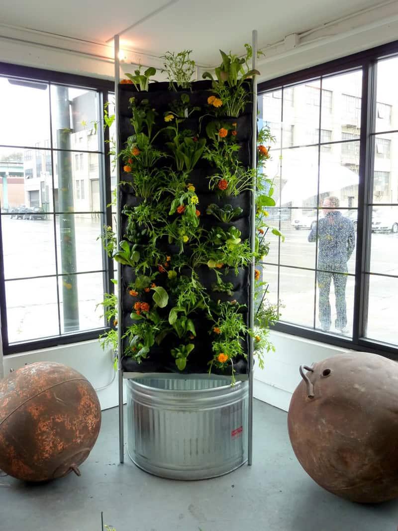plants on walls_designrulz (22)
