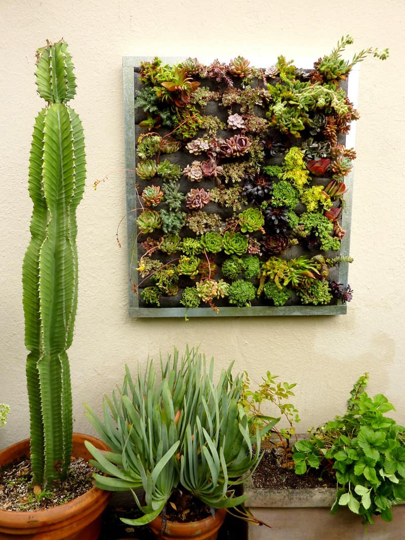 vertical garden planters: love how you can have a garden using the