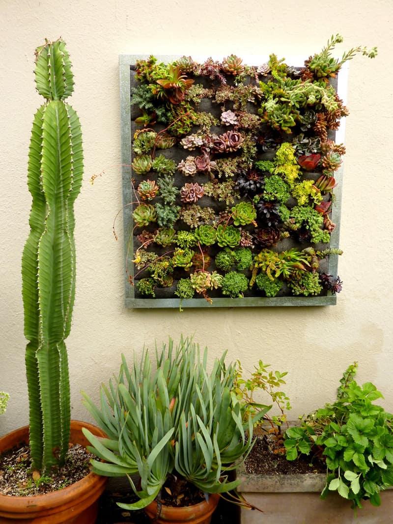 plants on walls_designrulz (26)