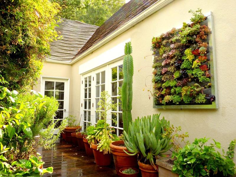 plants on walls_designrulz (27)