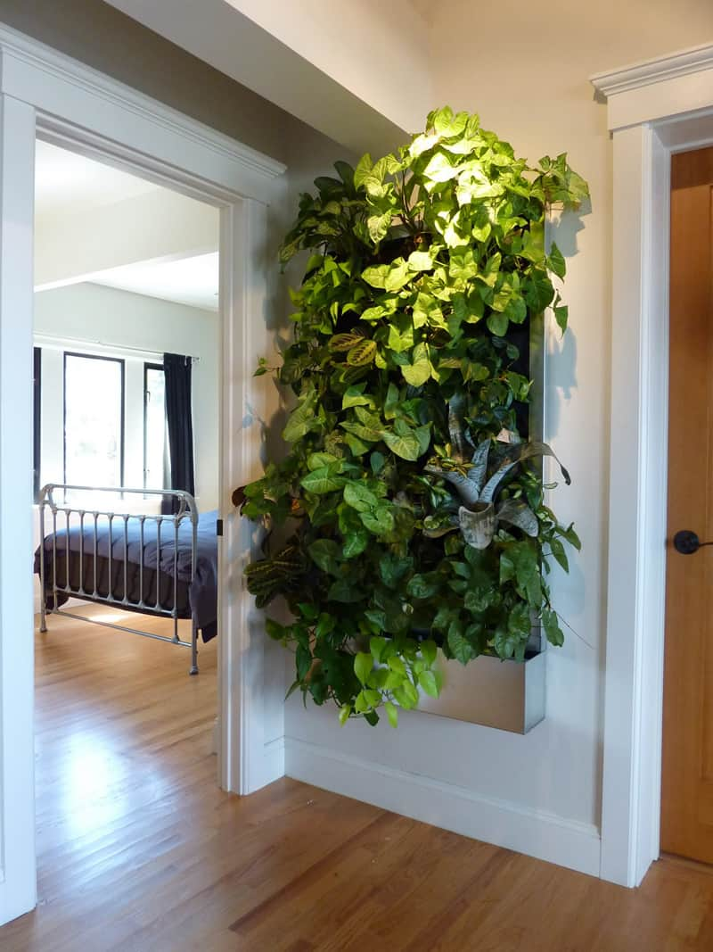 plants on walls_designrulz (29)