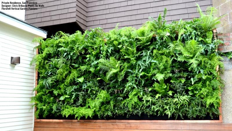 plants on walls_designrulz (3)
