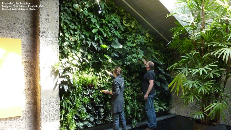 plants on walls_designrulz (4)