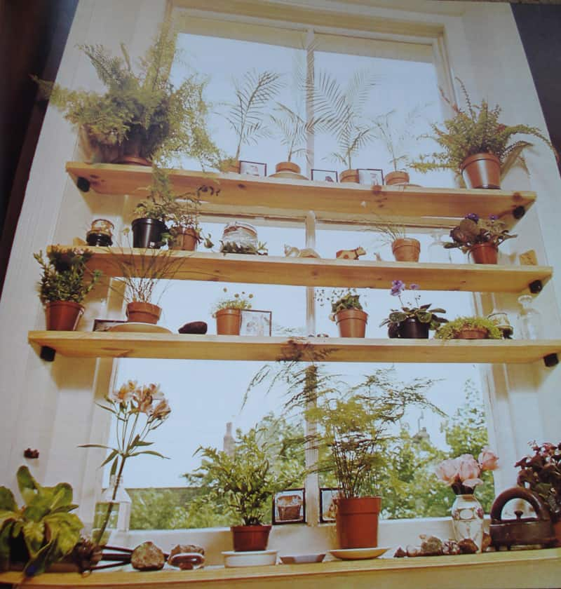 shelf-window_designrulz (15)