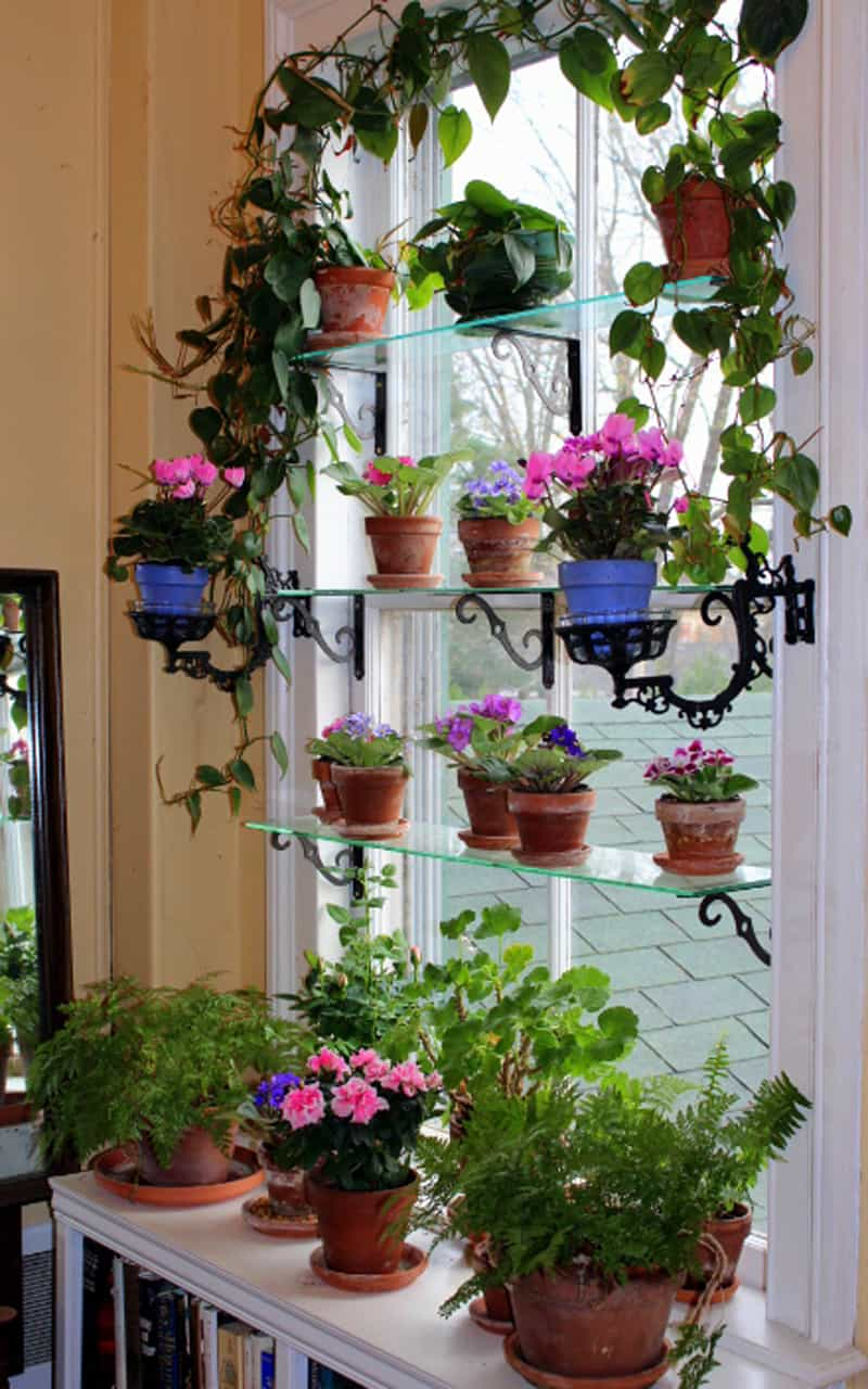 Diy 20 ideas of window herb garden for your kitchen for Garden design windows 7
