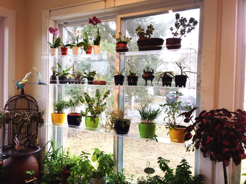 _shelf-window_designrulz cable_window_shelf_DR HerbGarden_ikea ...