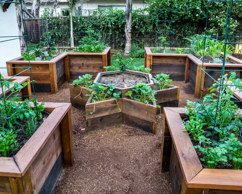Garden Raised Beds (10)