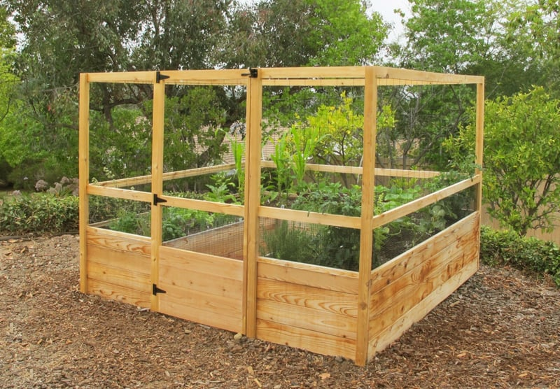 Garden Raised Beds (2)