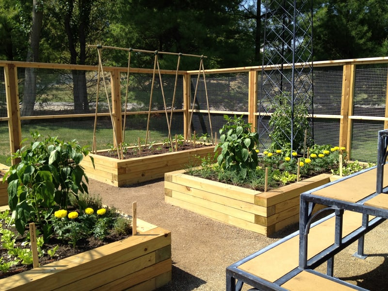 Raised Beds Container Garden Information