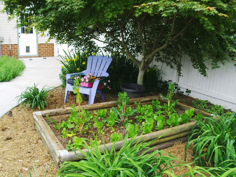 Garden Raised Beds (28)