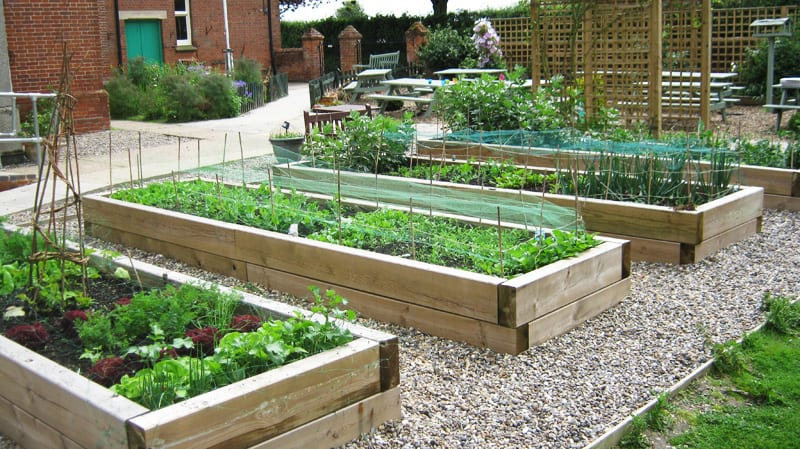 Raised Garden Beds: How to Build and Install Them