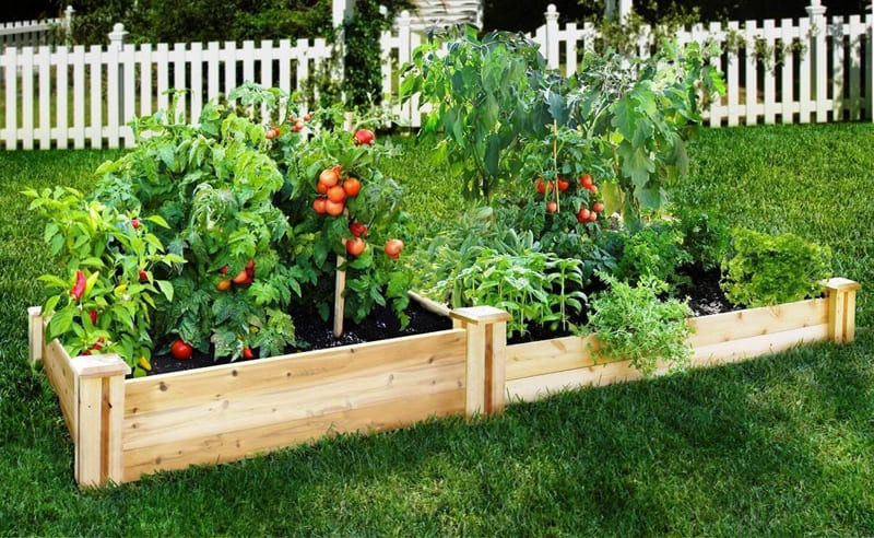 Garden Raised Beds (35)