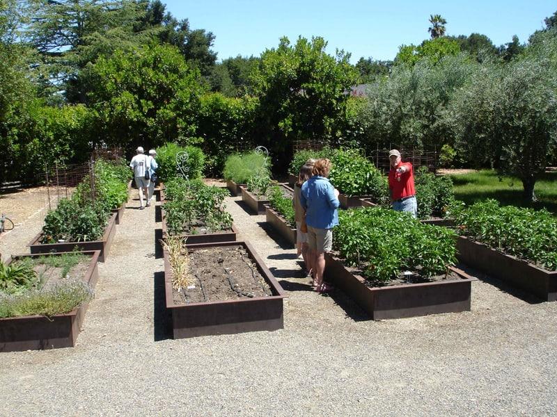 Garden Raised Beds (38)