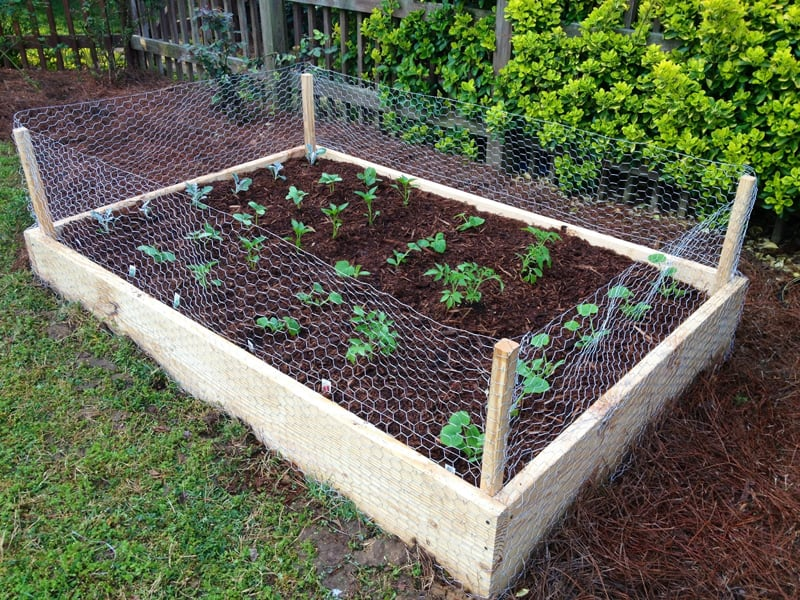 Garden Raised Beds (46)