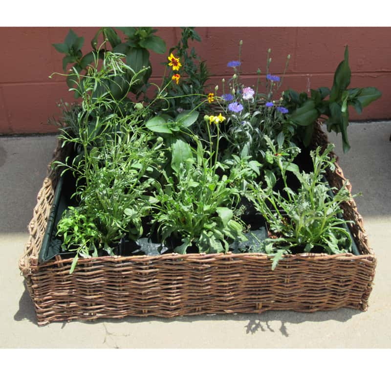 Garden Raised Beds (48)