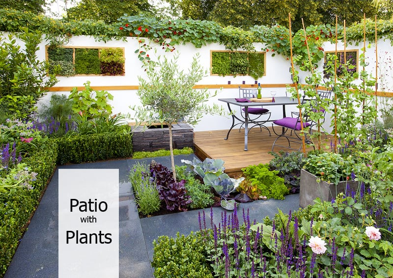 How to decorate your patio with plants for Small patio plant ideas