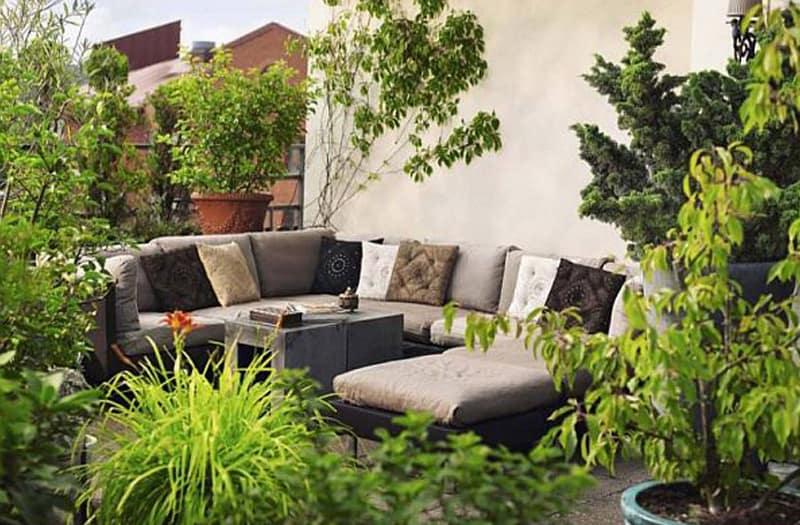 plant patio-designrulz (2)