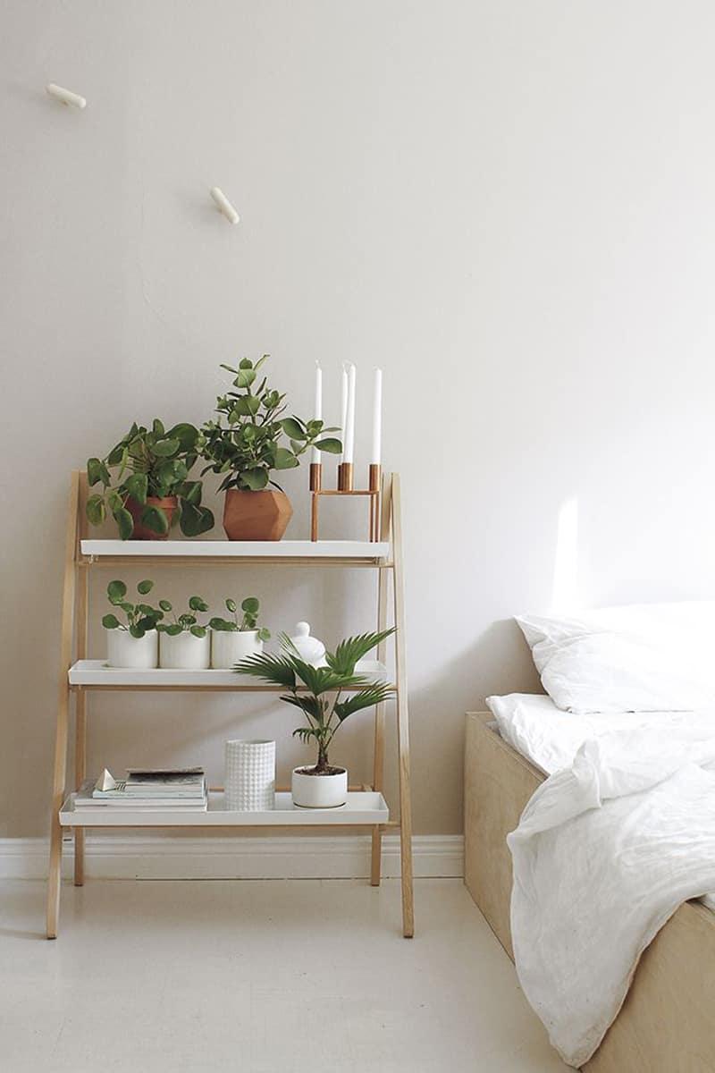 plants_ interior_designrulz (11)