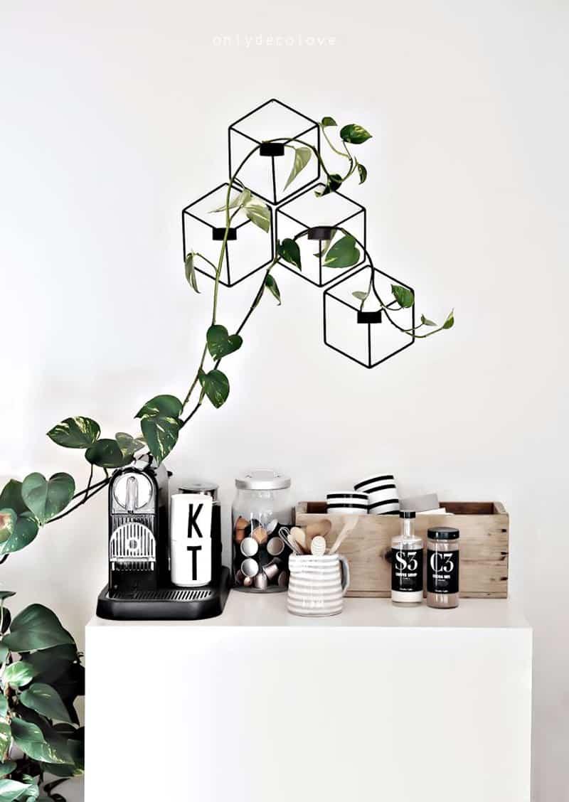 plants_ interior_designrulz (13)