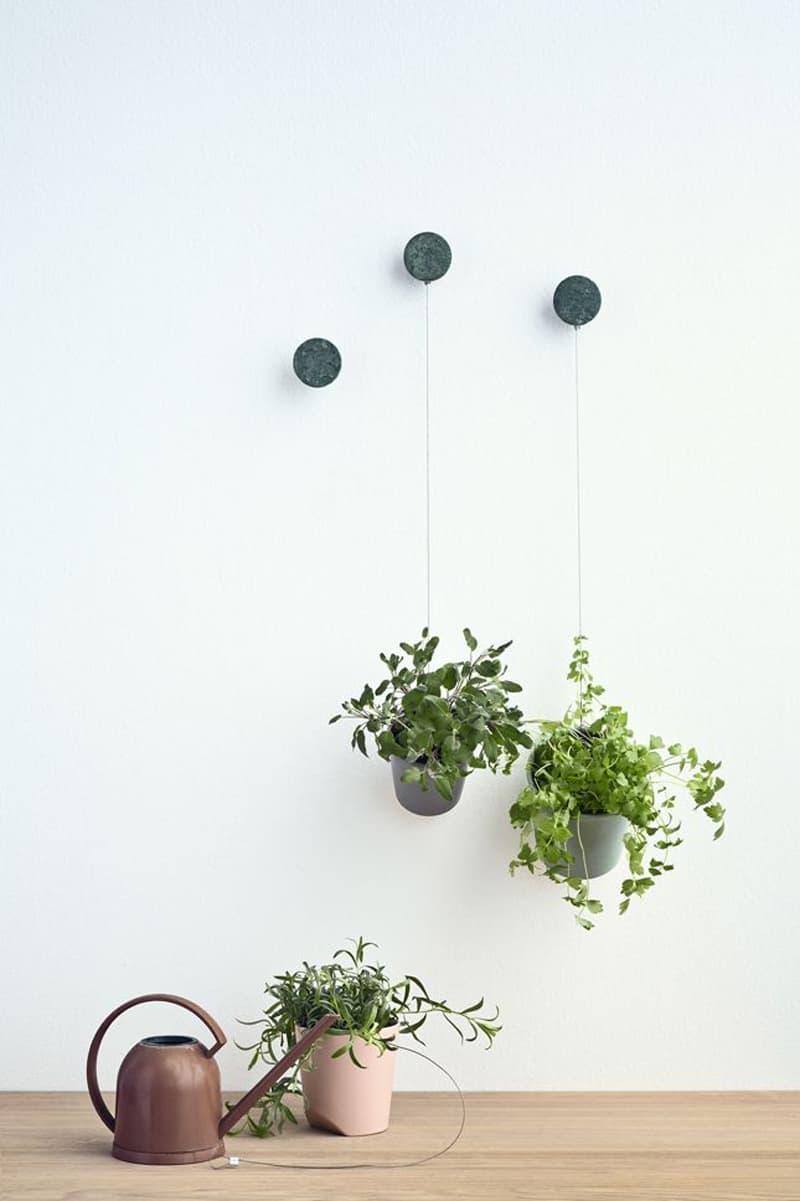 plants_ interior_designrulz (15)