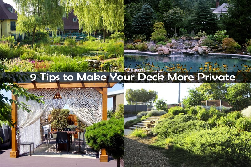 How To Make Backyard More Private 9 tips to make your deck more private