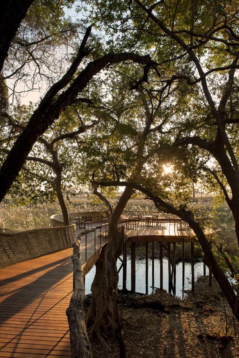Sandibe Okavango Safari Lodge (4)